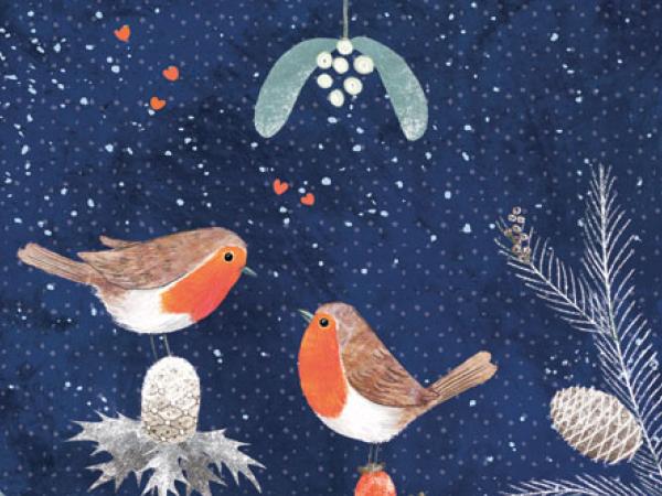 Meningitis Now fundraising Christmas Cards 2019 - link box