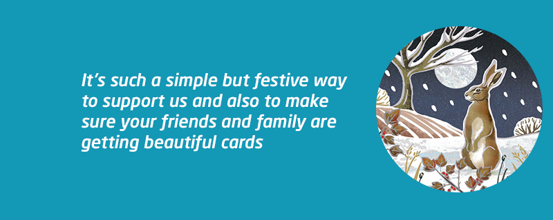 Christmas card sales supporting Meningitis Now.