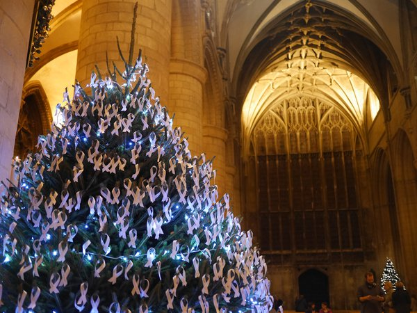 Meningitis Now Christmas carol concert