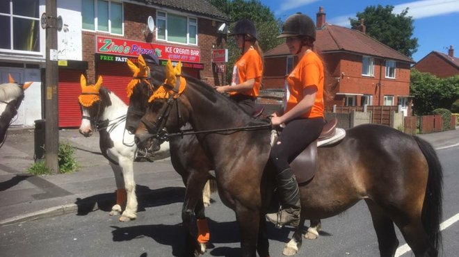 Horse ride blog