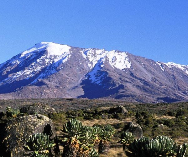 Meningitis Now overseas fundraising event - Kilimanjaro