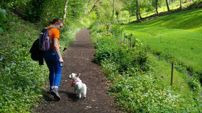 Meningitis Now Walk 30 Miles in June Facebook challenge fundraiser