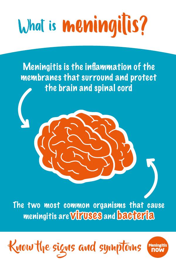 Pinterest graphic - What is meningitis