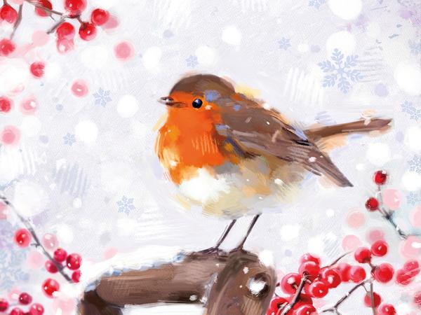 Meningitis Now fundraising - Christmas cards - Robin on fork handle