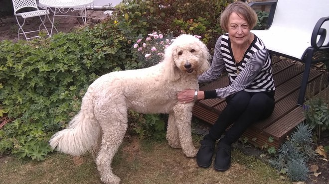 Susan H-J bacterial meningitis case study
