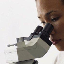 Meningitis Now research